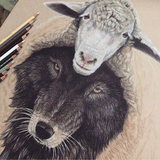 animals color pencil drawing by lonewolf08