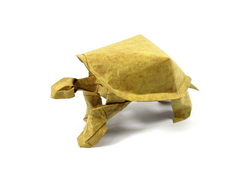 tortue paper sculptures art