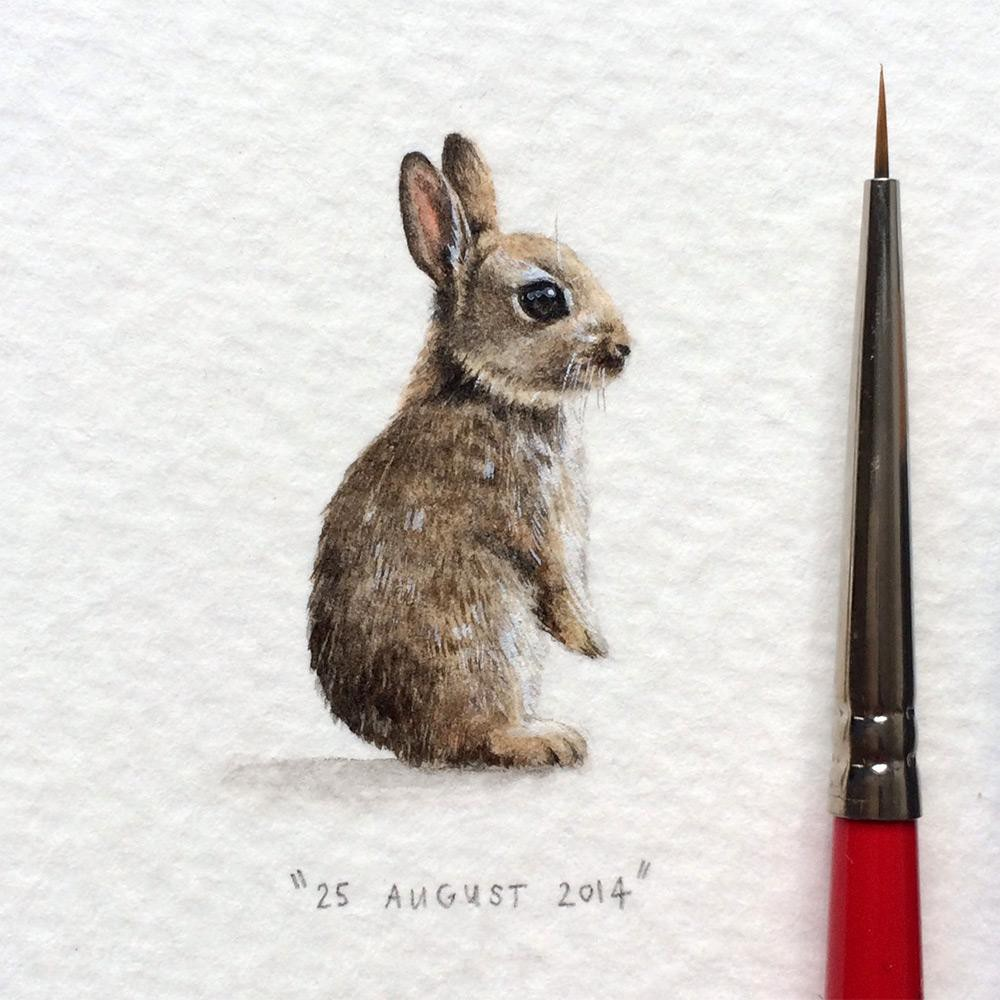 rabbit creative paintings by lorraine loots