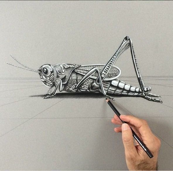 grasshopper 3d drawings by leonardo pereznieto