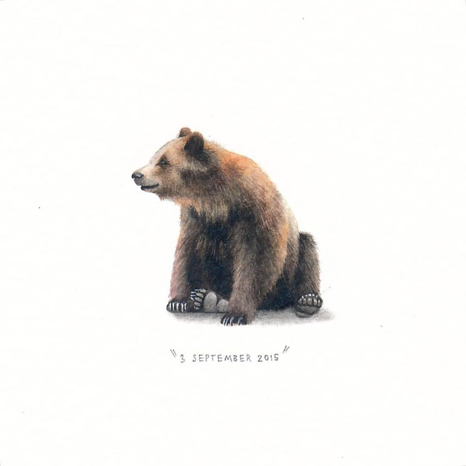 bear creative paintings by lorraine loots