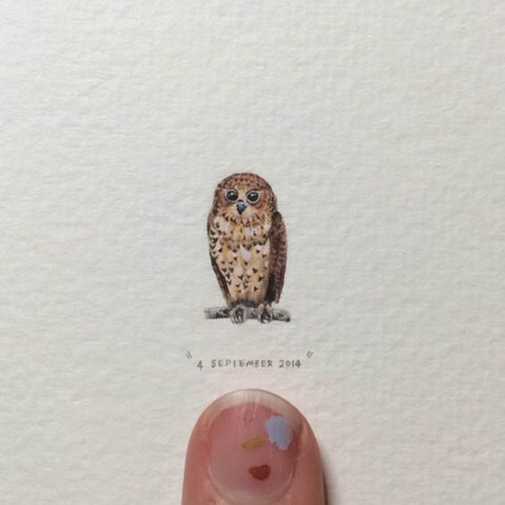 owl creative paintings by lorraine loots