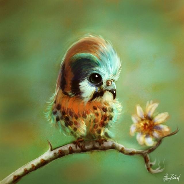 bird digital art by okan bulbul