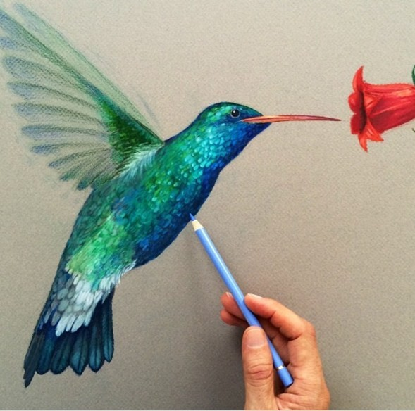 hummingbird 3d drawings by leonardo pereznieto