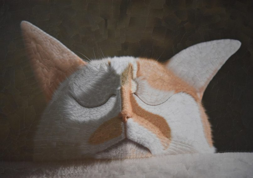 collage art work cat by lola dupre