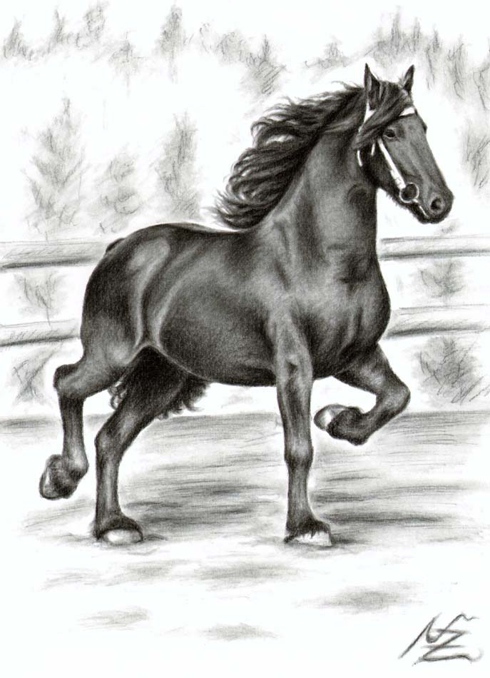 3 horse color pencil drawing nicole