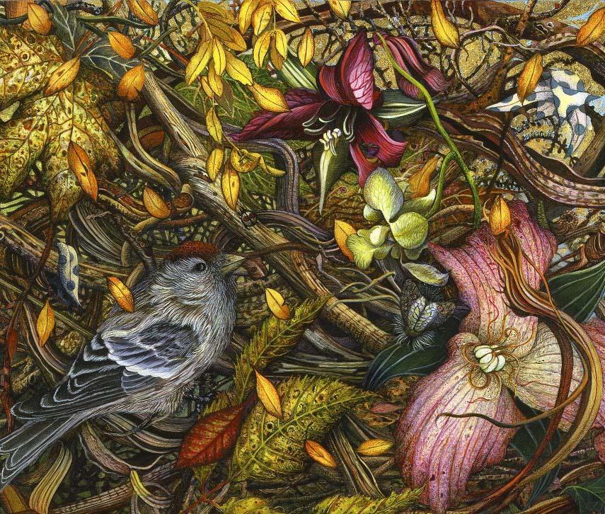 bird flower illustration judy