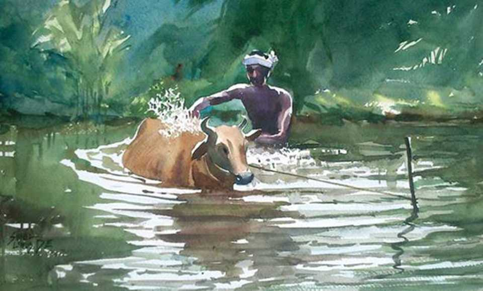 cow-bathing-watercolor-painting-sunil
