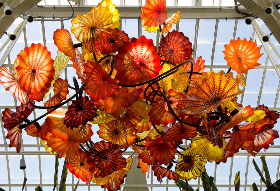 glass architecture installation chihuly