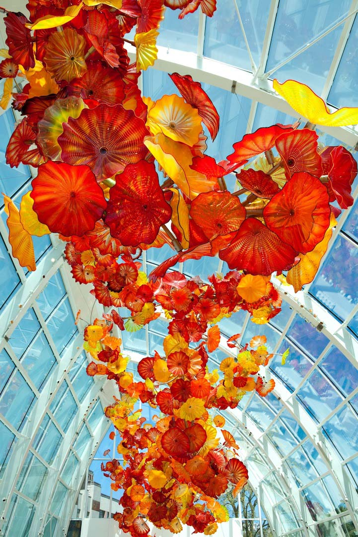 sealing architecture installation chihuly