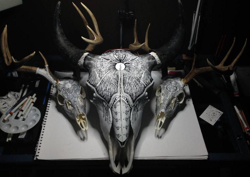 deers animal drawings peter