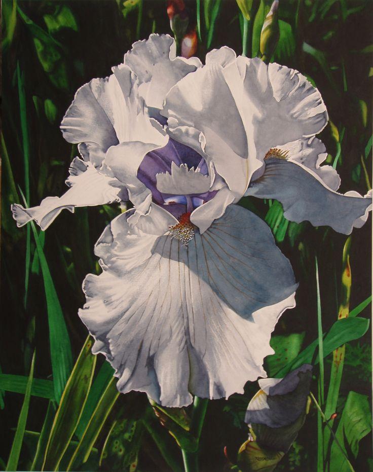 flower watercolor paintings marlin