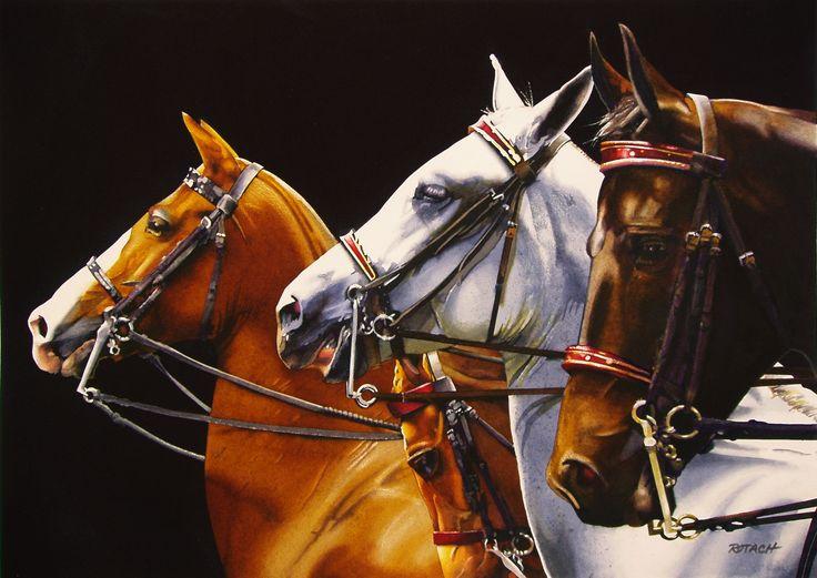 horses-watercolor-paintings-marlin