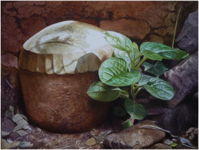 plant-watercolor-paintings-raghunath