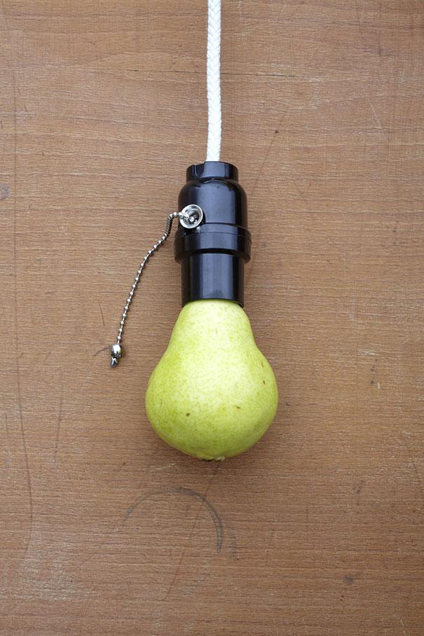 fruit art bulb sarah illenberger
