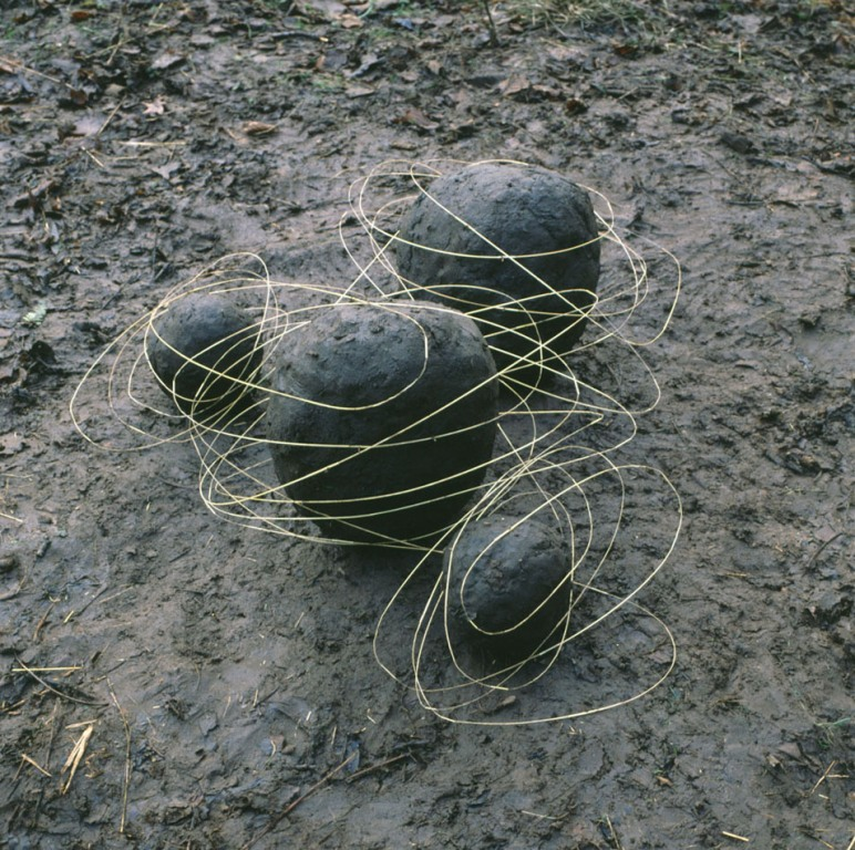 creative art ideas stone andy goldsworthy