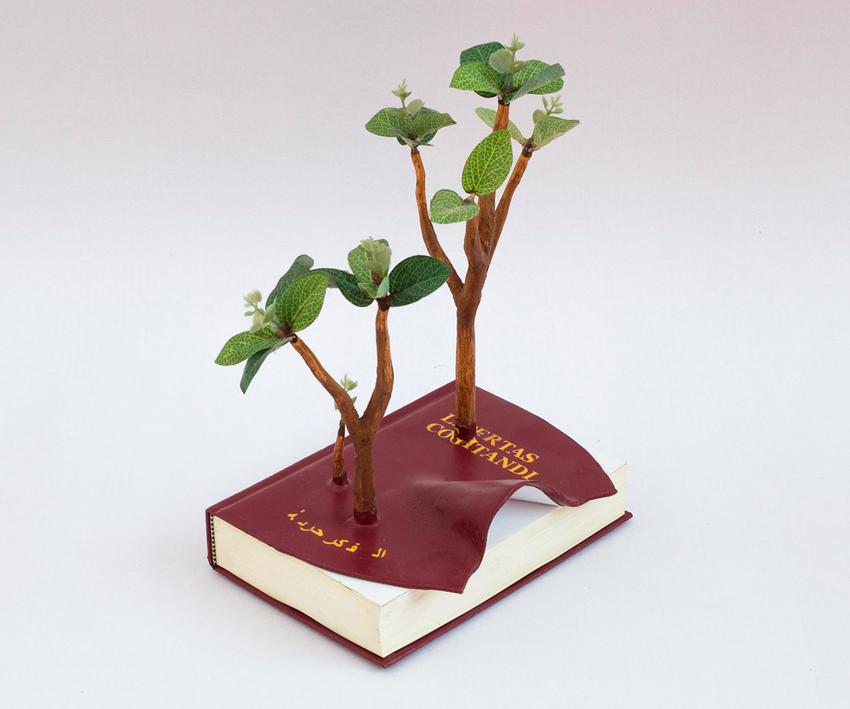 creative wood sculpture book by camille kachani