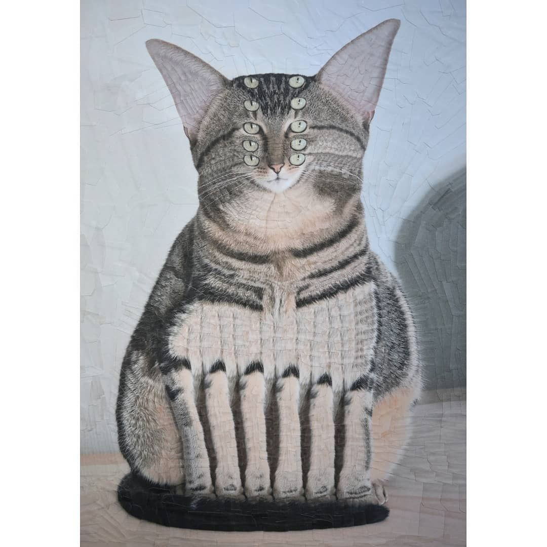 6 funny cat painting darwin by lola dupre