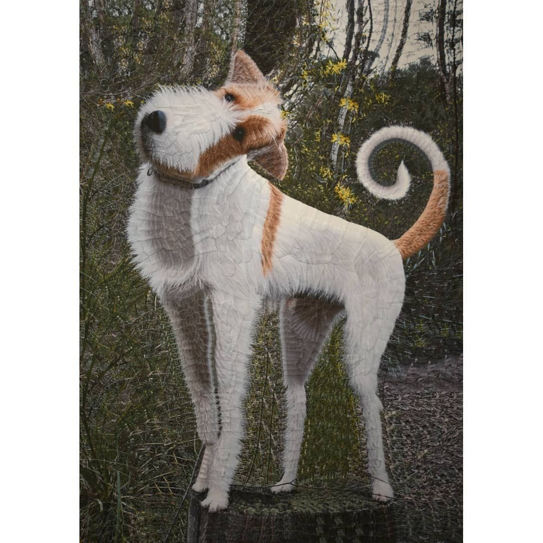 7 funny dog painting collage eddie by lola dupre