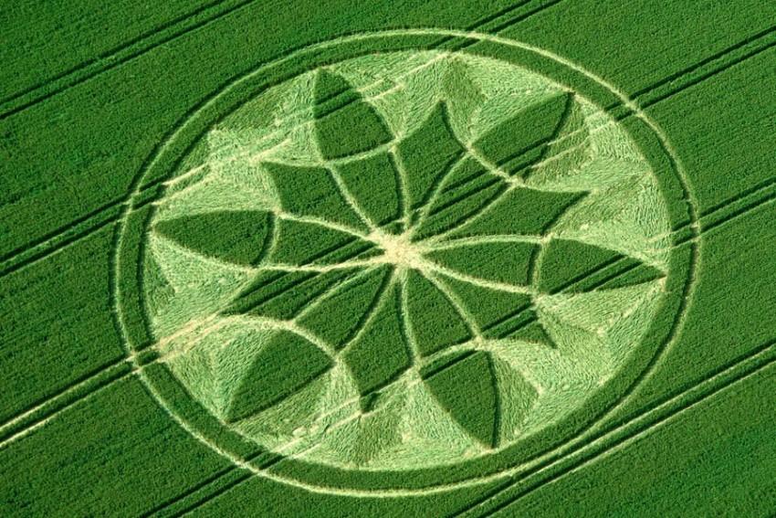crop circles design