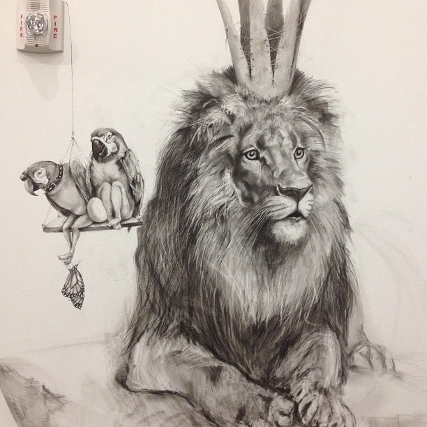1 lion animal pencil drawing by adonna khare
