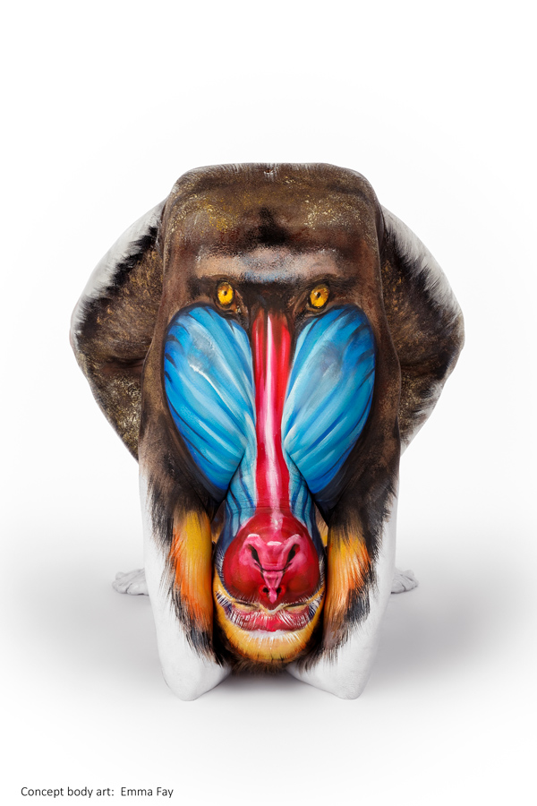 monkey body painting art by emma fay