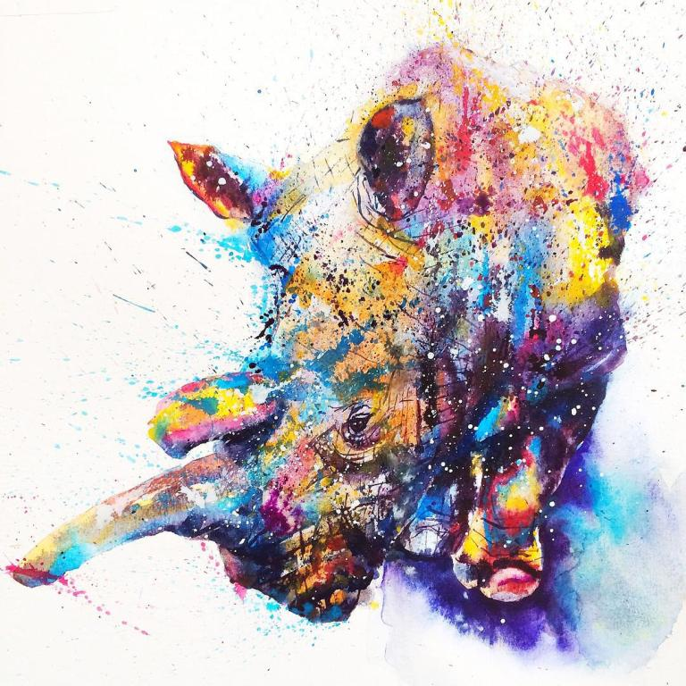 rhinoceros colorful watercolor paintings by liviing