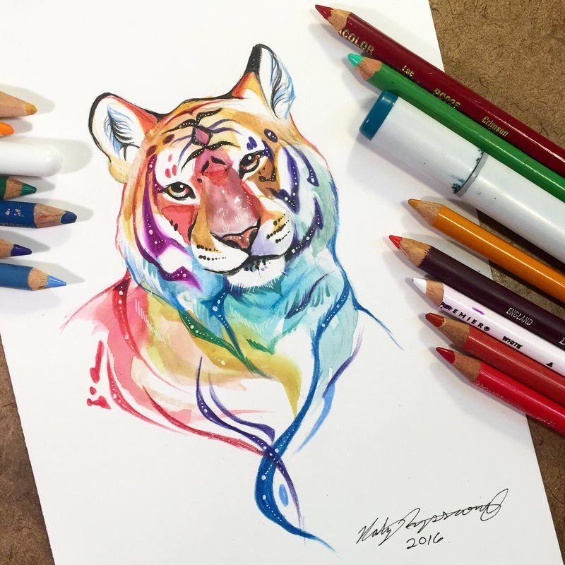 tiger animal drawings by katy lipscomb