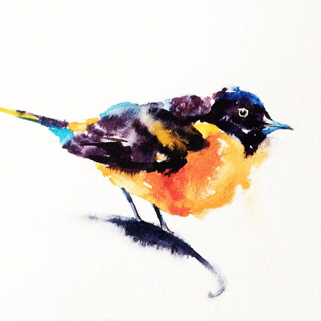 bird colorful watercolor paintings by liviing