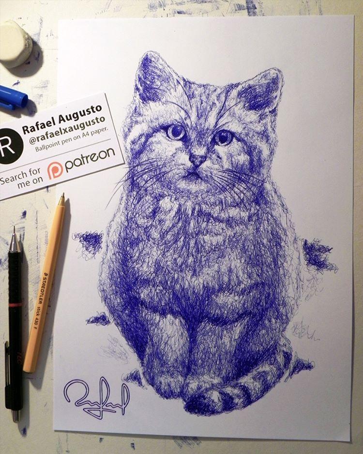 12 cat animal pen drawings by rafael augusto