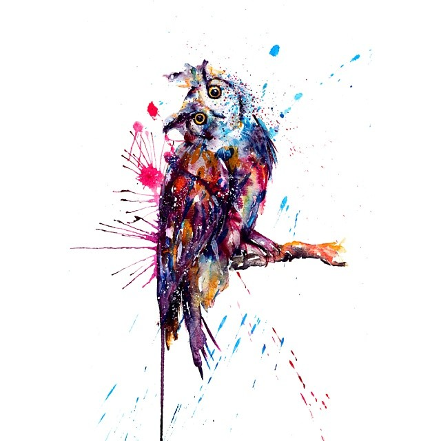 owl colorful watercolor paintings by liviing