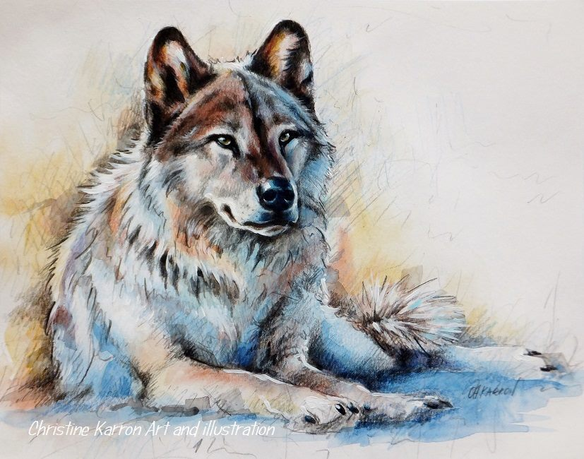dog watercolor paintings by christine karron