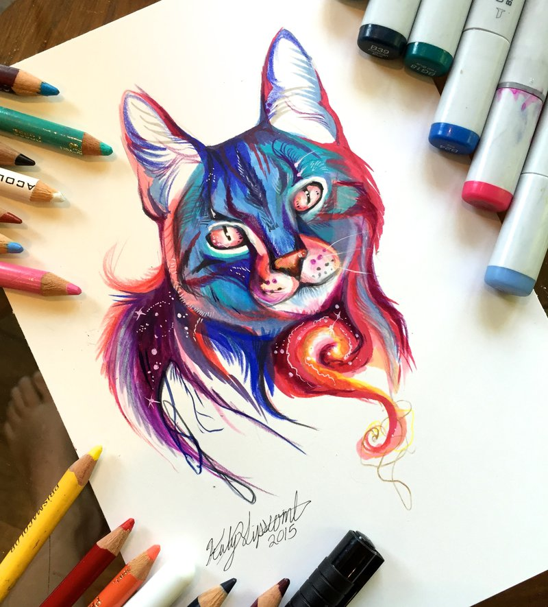 galaxy cat animal drawings by katy lipscomb