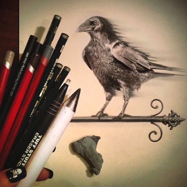eagle pencil drawing by stacy jean
