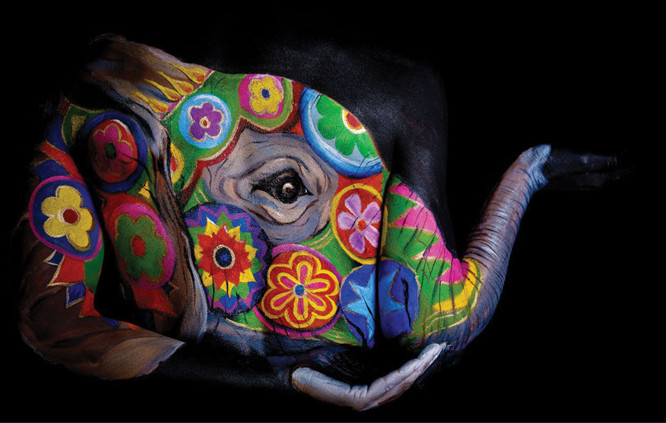 elephant body painting art by emma fay