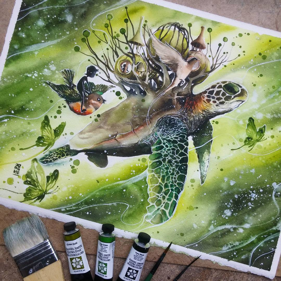 18 turtle animal watercolor paintings by luqman reza