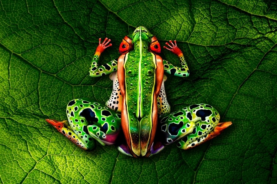 frog body painting art by emma fay