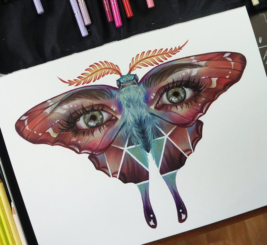 butterfly eye color pencil drawing by maria