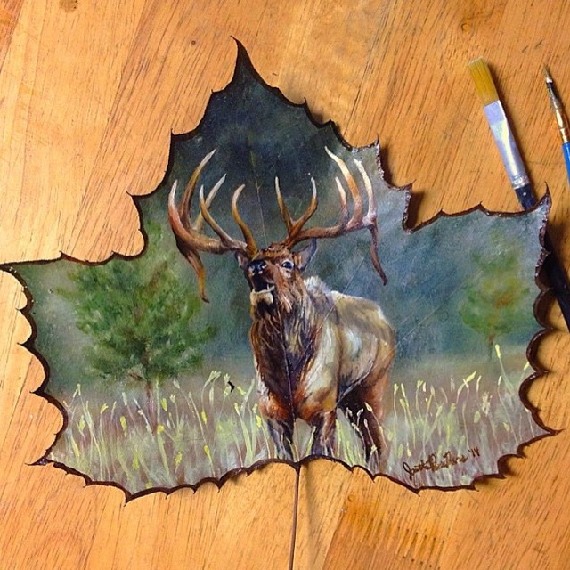 deer creative painting leaf by janette rose