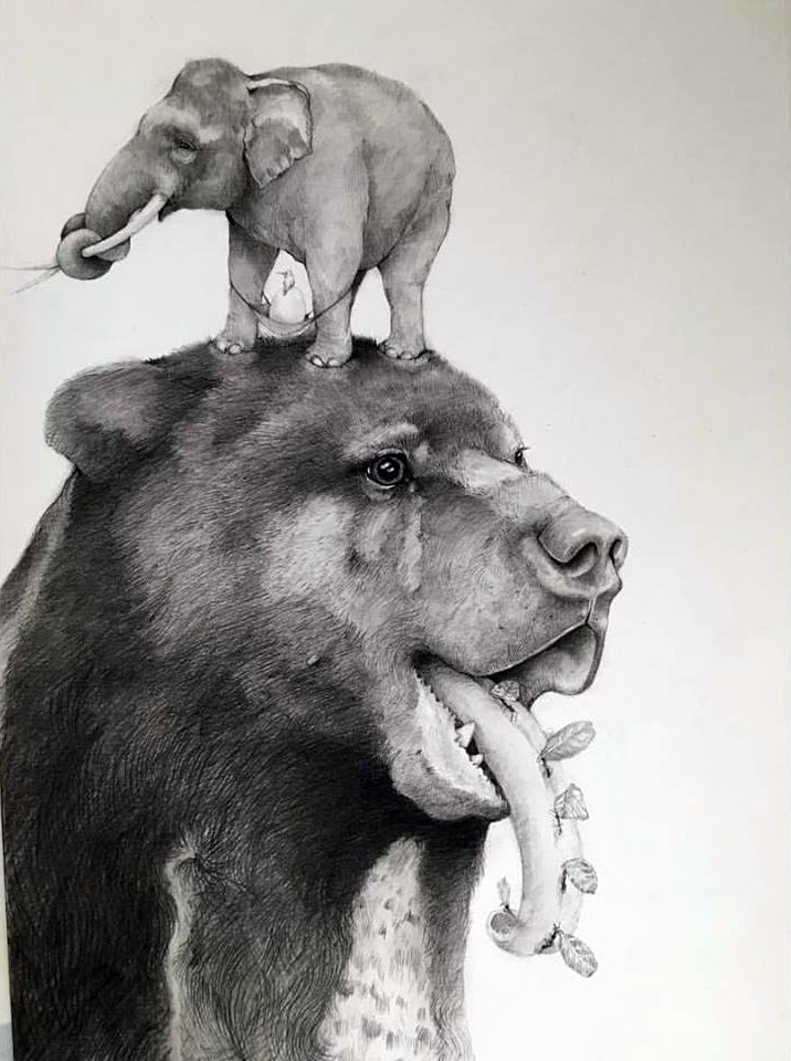 dog animal pencil drawing by adonna khare