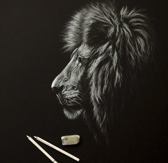 20 lion animal paintings by richard symonds