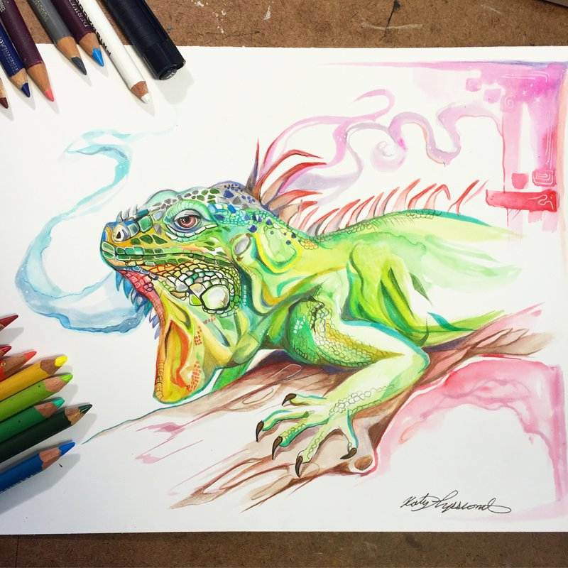 lizard animal drawings by katy lipscomb