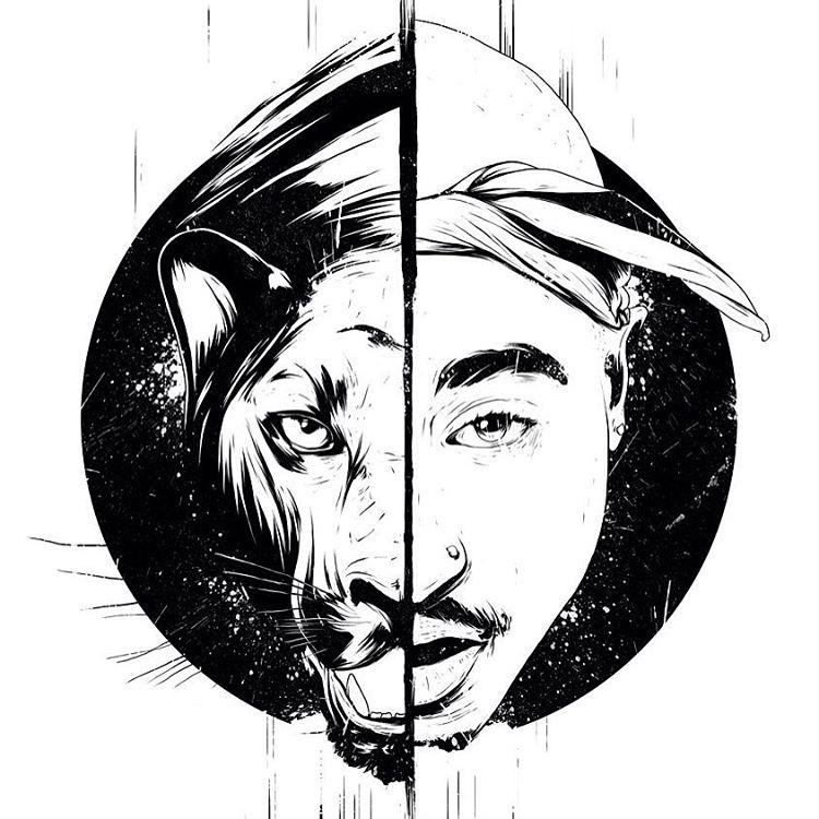 tiger creative drawings by conrado salinas