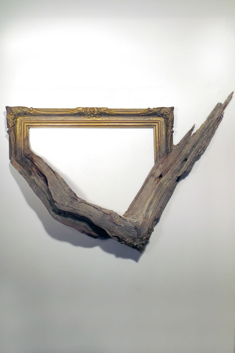 trees fused picture frames by fusionframesnw