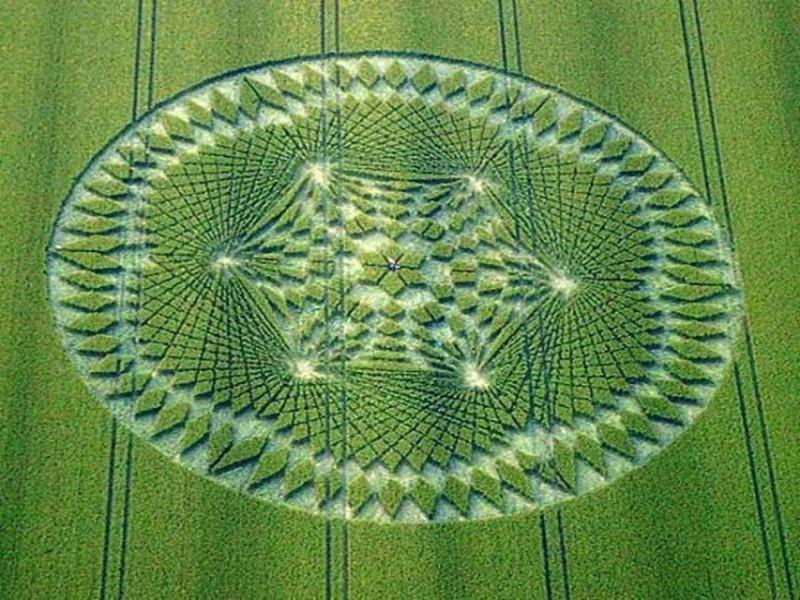 crop circles design by steve alexander