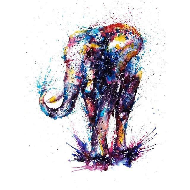 elephant colorful watercolor paintings by liviing