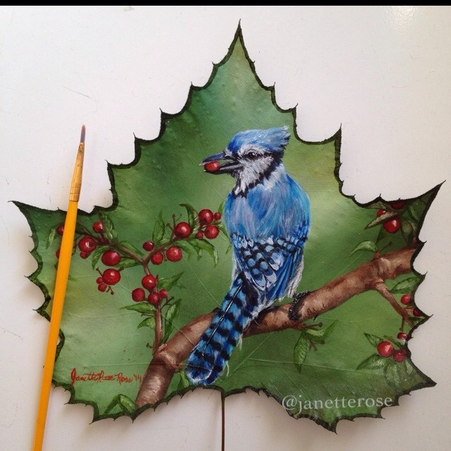 jay bird creative painting leaf by janette rose