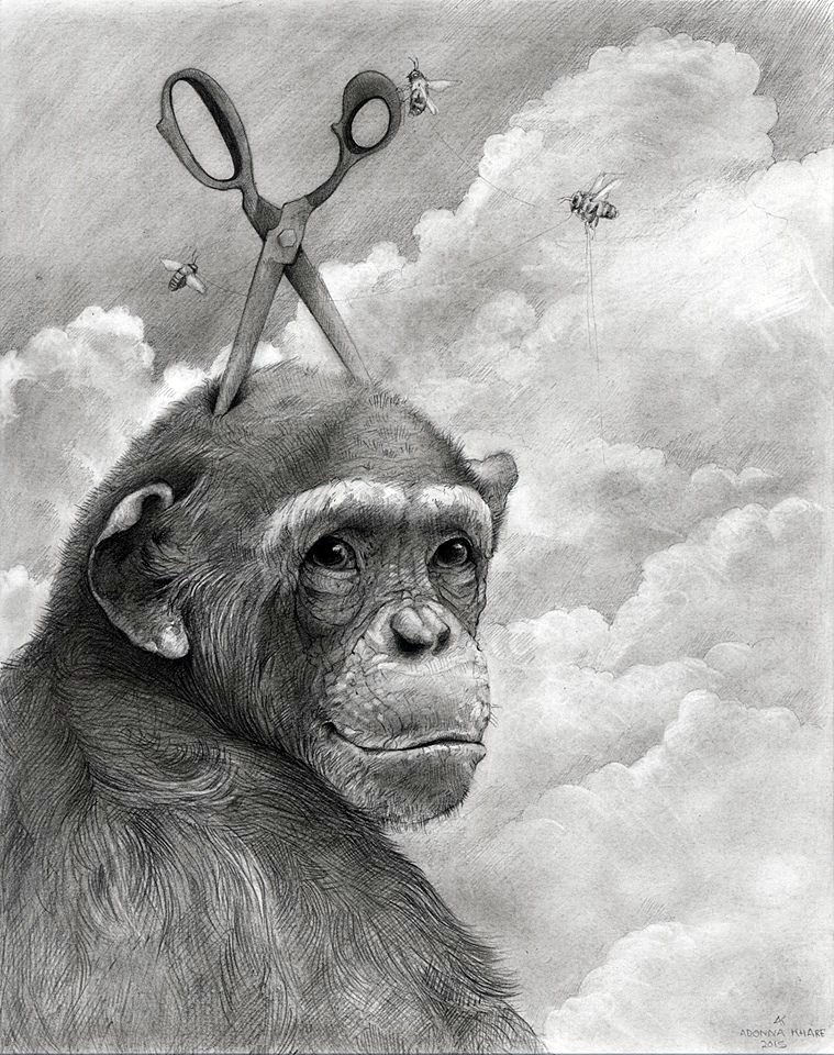 gorilla animal pencil drawing by adonna khare