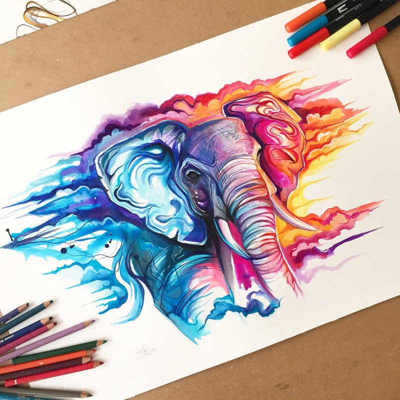 elephant animal drawings by katy lipscomb