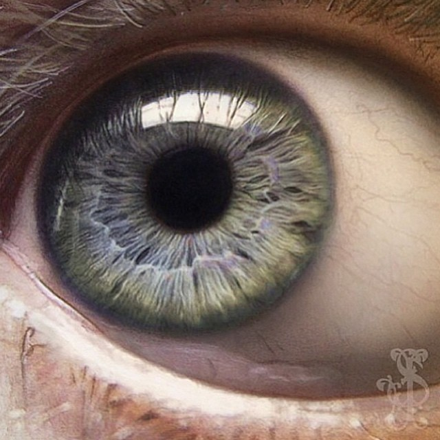 eyes pencil drawing by stacy jean